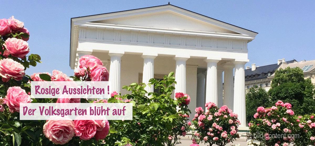 Rosenduft & Blütenzauber im Volksgarten Wien