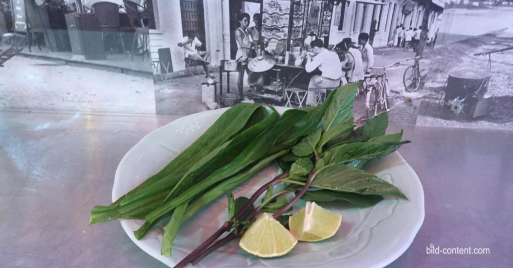 Suppenkräuter aus Ivys Pho House Vietnamesich Essen Wien Bildcontent