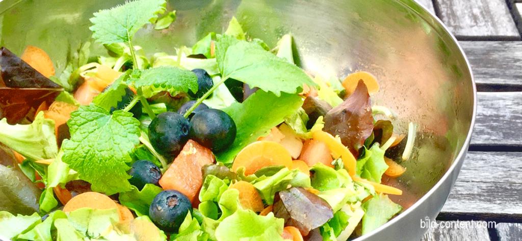 Blattsalat mit Ruccola, Birnen und Heidelbeere