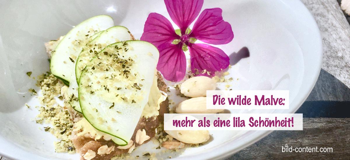 Wilde Malve oder Käsepappel in der Küche