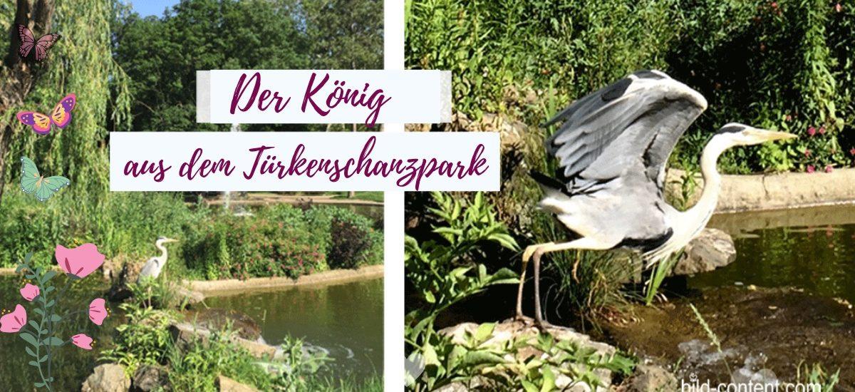 Safari im Türkenschanzpark Wien