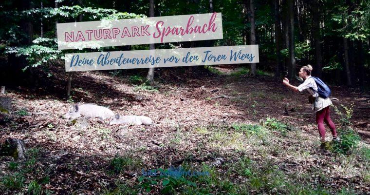 Naturpark Sparbach – Wildschweine, Ruinen und Streichelzoo