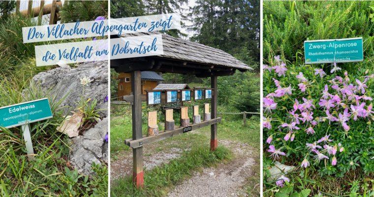 Ausflüge Kärnten: Villacher Alpengarten