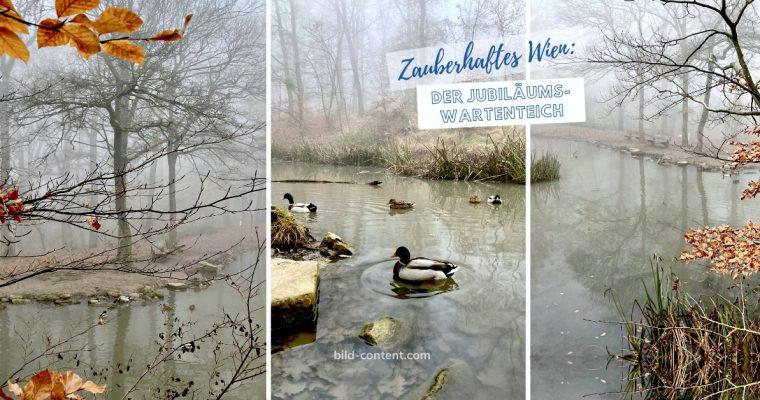 Jubiläumswartenteich: Lieblingsplatz im Ottakringer Wald