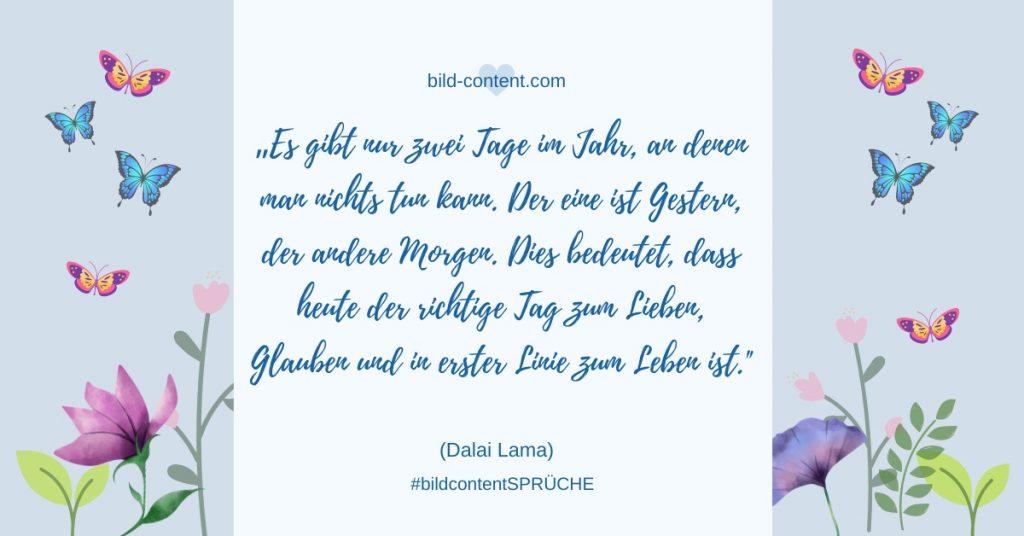 Dalai Lama,Dalai Lama Glück,Dalai Lama Zitat,Spruch Glück,Spruch Leben,Sprüche Glück,Zitat Glück