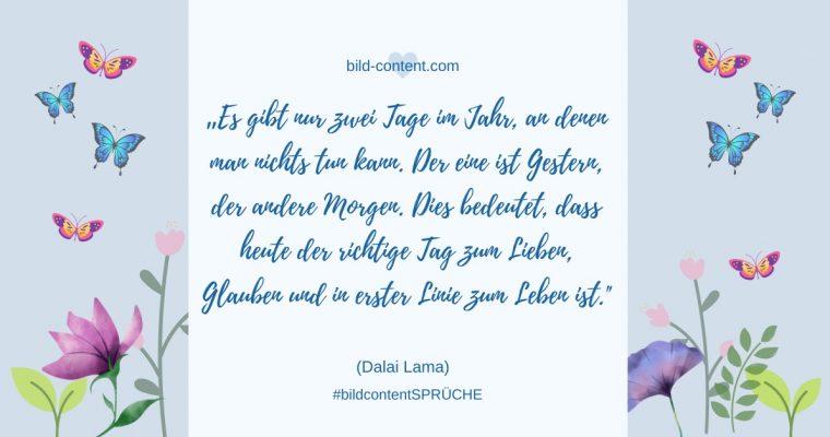 Leben: Dalai Lama Zitat