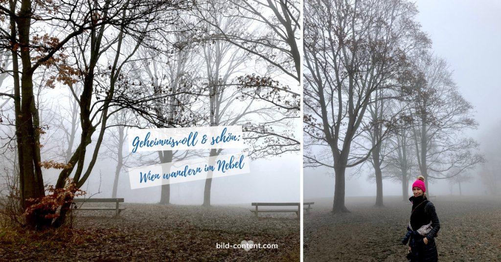 Kreuzeichenwiese im Nebel. Dezember 2020.