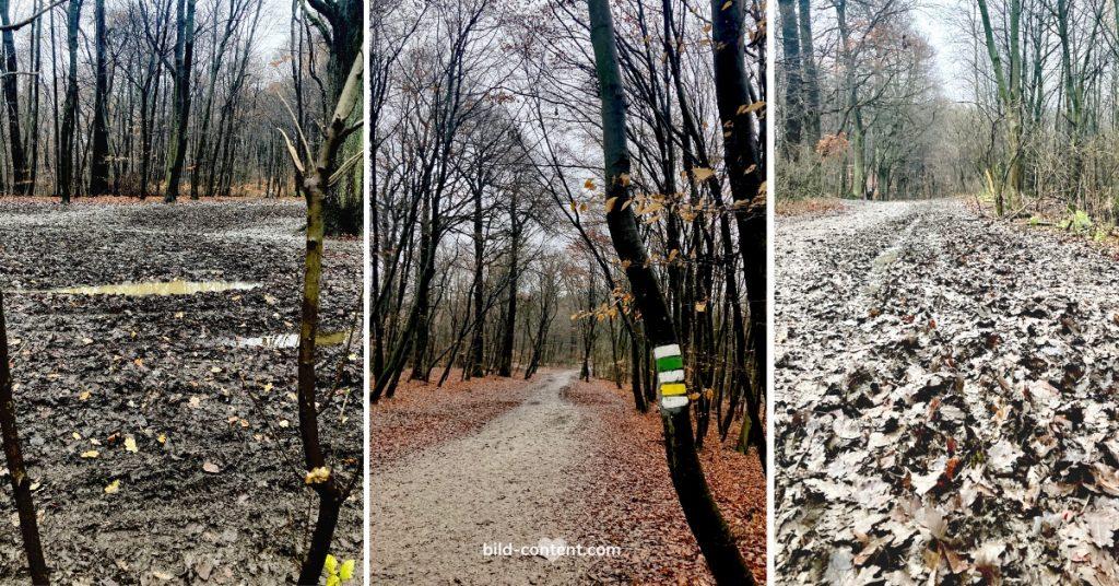 Wandern bei Schlechtwetter in Wien