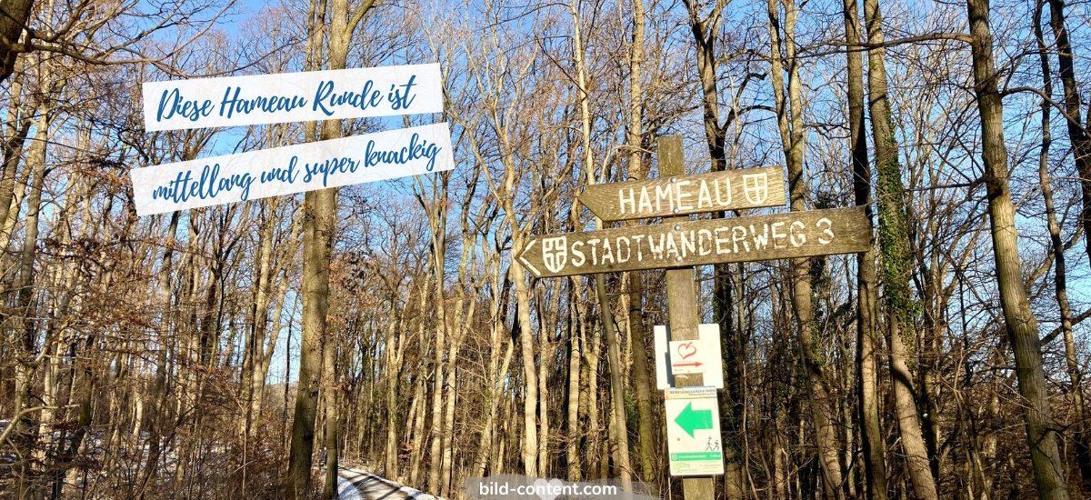 Stadtwanderweg zum Hameau in Wien Neuwaldegg