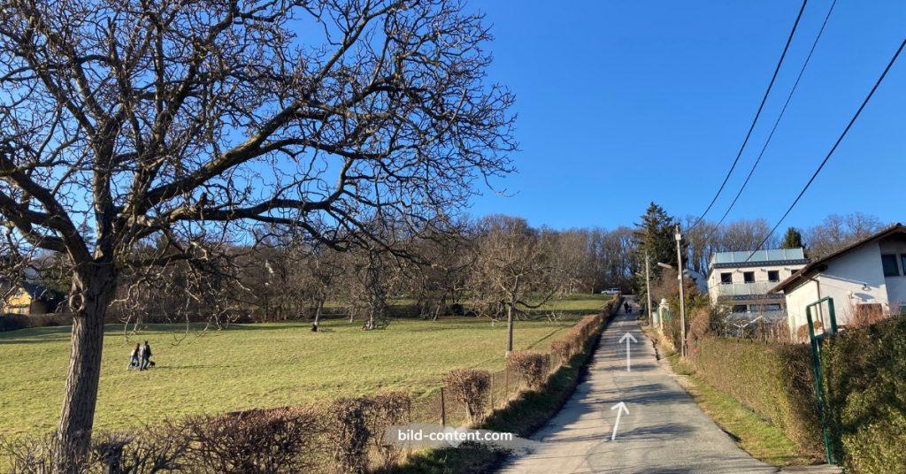 Josef Bindtner Weg richtung Ladenburghöhe, links ist die obere Kreuzwiese zu sehen.