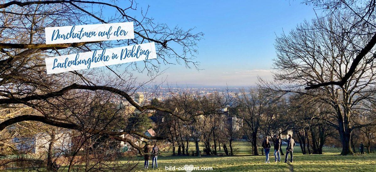Rundweg: Neuwaldegg – Schafbergwiese – Ladenburghöhe – Pötzleinsdorfer Schlosspark – retour