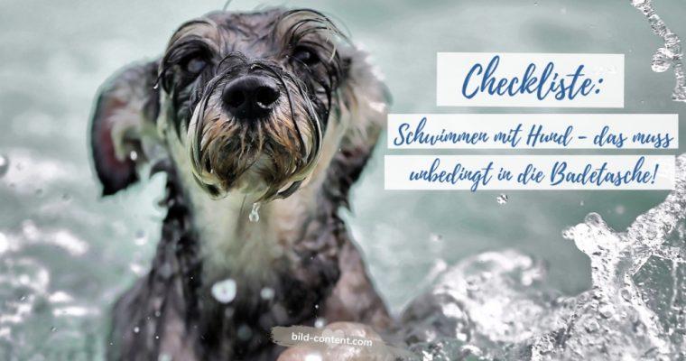 Checkliste: SCHWIMMEN mit Hund – das muss in die Badetasche