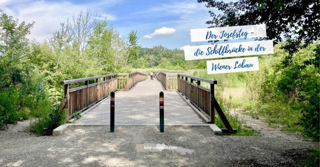 Obere Lobau Wien Schilfbrücke Josefsteg