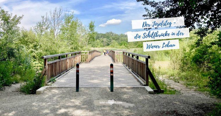 Spaziergang Donau Auen – Obere Lobau, Dechantlacke und Josefsteg